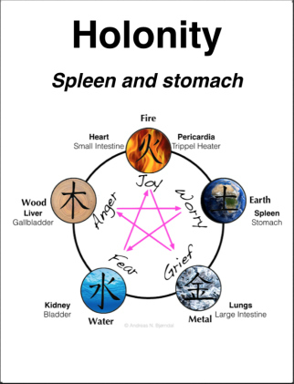 spleen-stomach